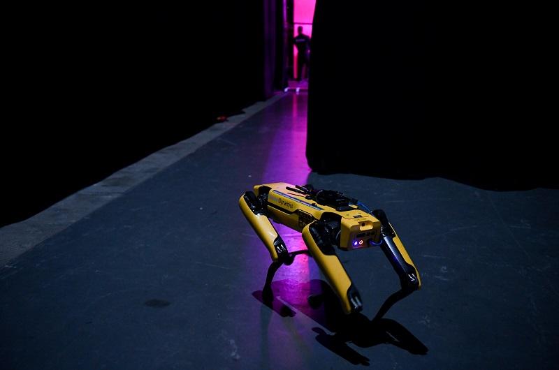 Rise of the Robot Quadrupeds